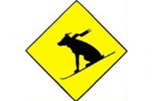 Dogs On Skis Band (yellow icon)
